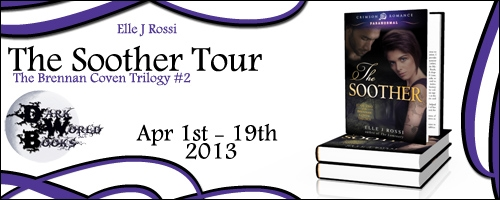 2013-TheSootherTourBanner